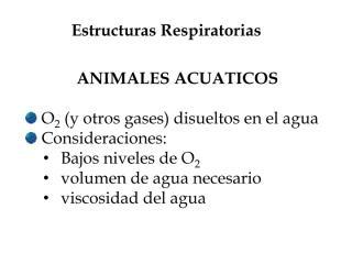 estructuras respiratorias.pdf
