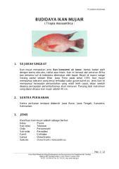 Budidaya Ikan Mujair.PDF