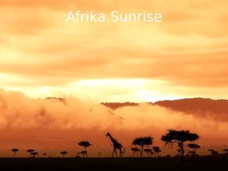 Africká fauna.pps