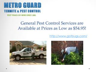 General Pest Control Services are Available at Prices as Low as $54.95!.pdf