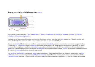 Estructura de la célula bacteriana.docx